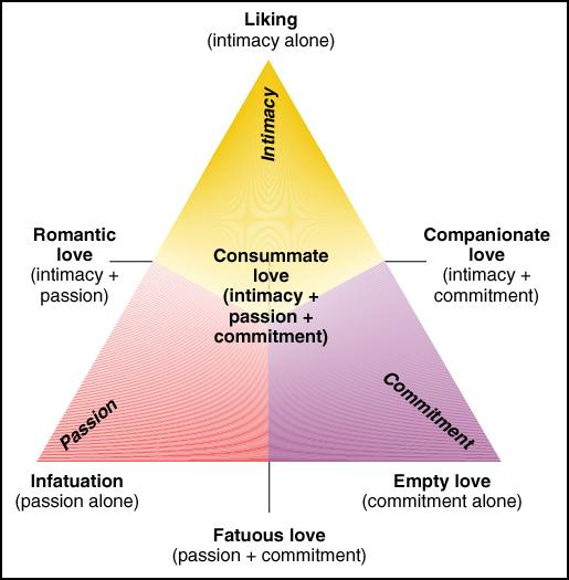 "In Sternberg's theory, the combination of all three of these elements is  labeled ""Consummate Love"" and is basically the holy grail of relationships."