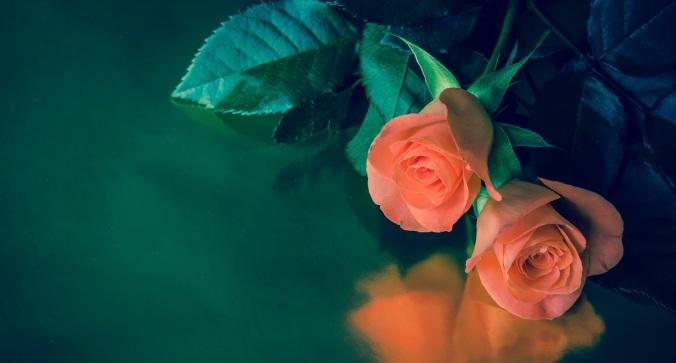 Fotolia_72885459_Subscription_Monthly_M.jpg